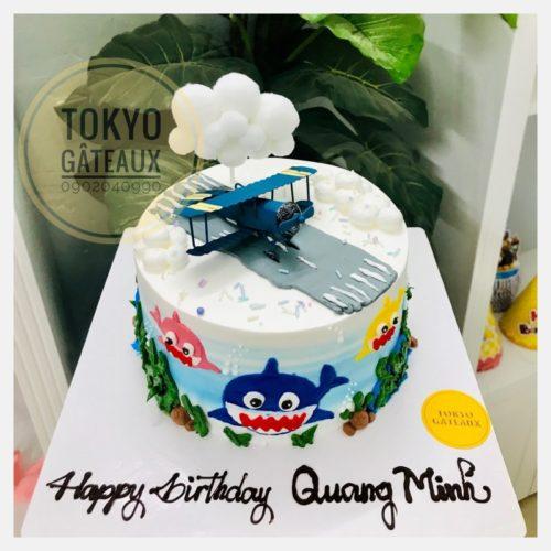 bánh sinh nhật máy bay và cá mập 3